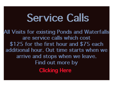 Pond-Waterfall-Service-calls